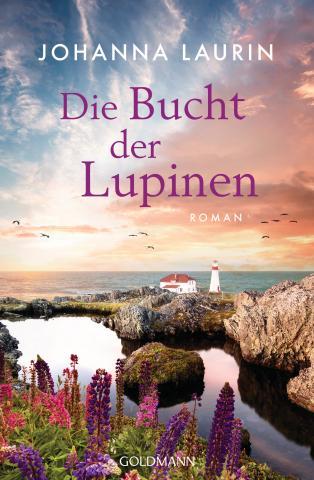 Buchcover Laurin 72dpi